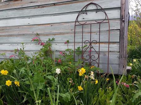 Gardening in the Intermountain West