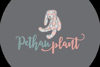 Petha Plant