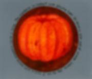 mandarincircle.jpg