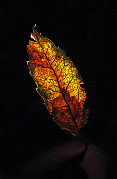 Dancing Stained Glass Leaf_watercolor in