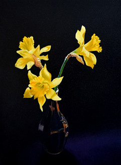 Yellow Against Black (1).jpg