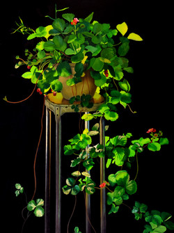 Strawberry_Plant_On_A_Stool