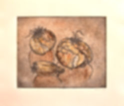 Onions gray and colored monoprint.jpg