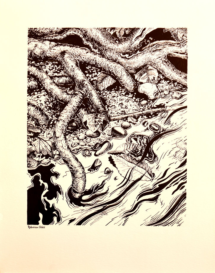stream and branches ink drawing.jpg