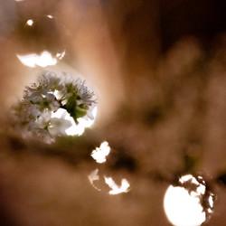 untitled shoot-037