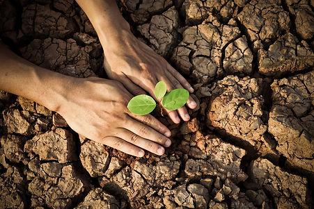 Climate+Change+F.jpg