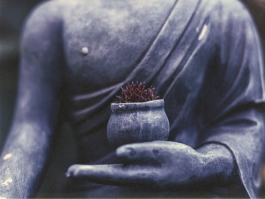 buddha-1308478_1920_edited.png