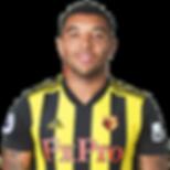 Fodboldpakker - Watford FC - Troy Deeney