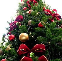Festas e Final de Ano