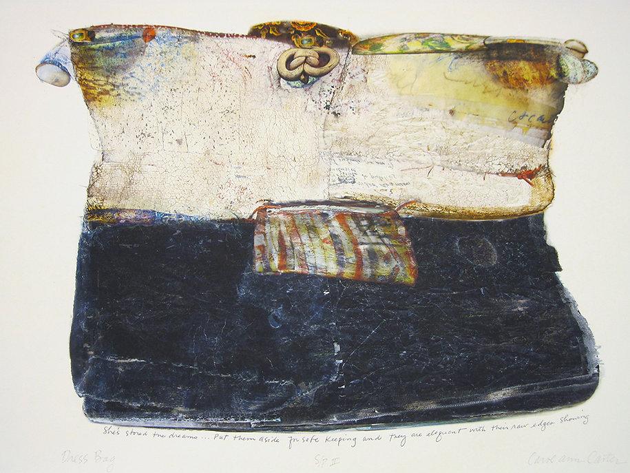 Dress Bag  by Carol Ann Carter
