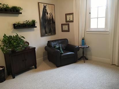 Tana DeSouza's therapy office