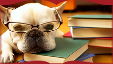 dog w book.png