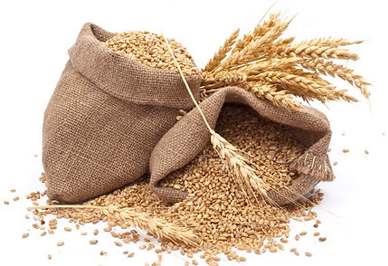 grains-3_edited.jpg