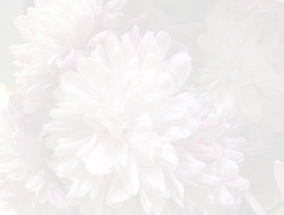 Screenshot%2525202020-11-26%252520at%252