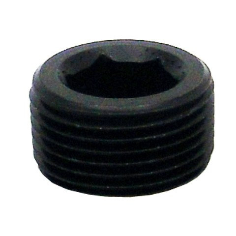 Allen Socket Pipe Thread Plugs