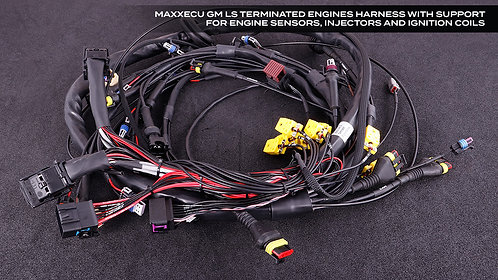 GM Terminated Harness