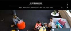 THE TINY BUSINESS GURU