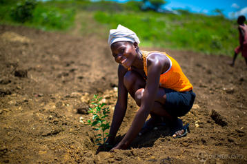 One Tree Planted-9.jpg