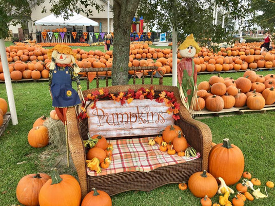 7 UnbeLEAFably Fun Fall Things to Do in Beaumont