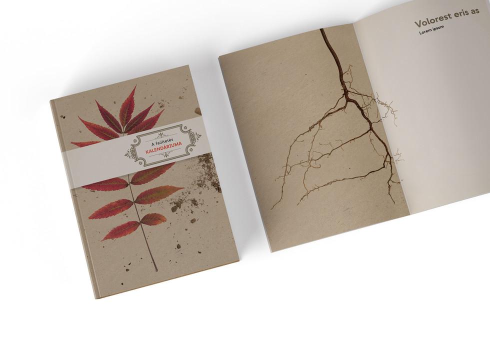 AdobeStock_346305386_bookmockup.jpg