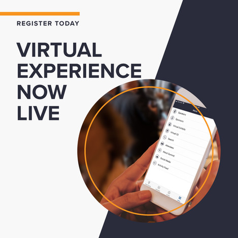 Virtual Experience Now Live
