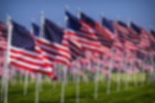Field of flags.jpg