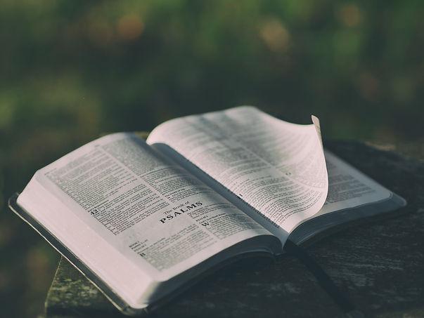 Bible 2 - FREE - Unsplash.com.jpeg