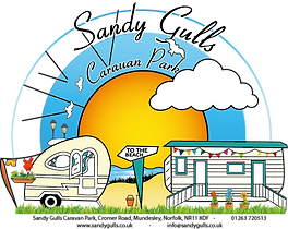 sandy gulls logo.png