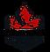 Roni-Logo.png