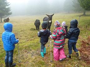 marche nordique enfant SENS A SONS NATUR