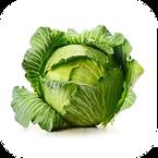 Vegetable: Golden Acre (Heirloom / Open - Pollinated) Grown with Liqui-Dirt!