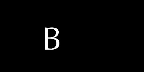 Baracca Recods Logo