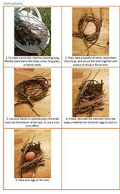 Woodland Theme - Nests.jpg