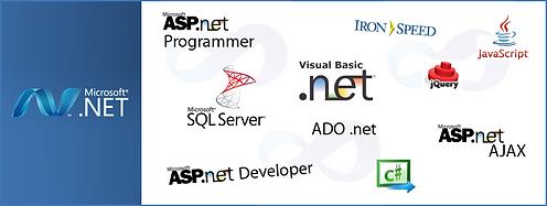 asp.net-developer1.png