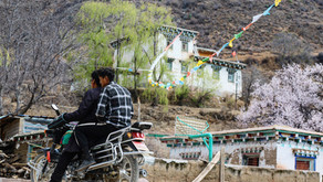 Taste Tibet Deliveries