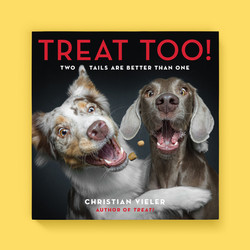 Treat Too! cover