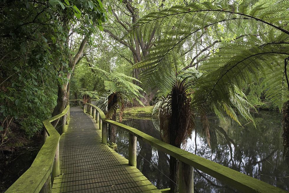 Willowbank Wildlife Reserve