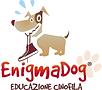 Enigma logo_menu.png