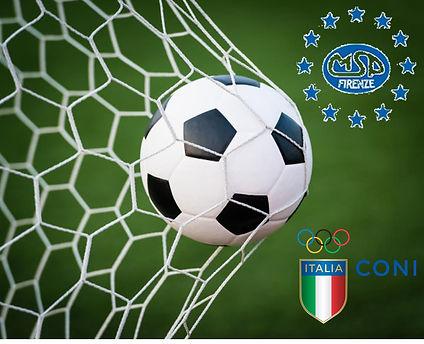 Calcio msp.jpg