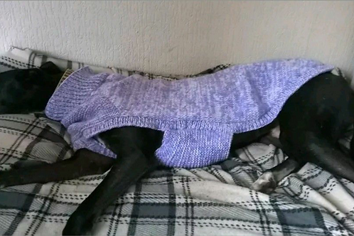 Knitted greyhound sweater pattern