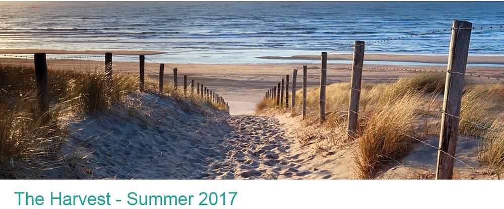 The Harvest - Summer 2017