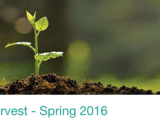 The Harvest - Spring 2016