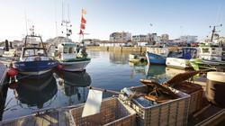 Port de St Gilles X Vie