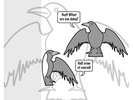 eka pada bakasana - half crow pose