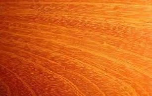 Wood Jatoba.jpg