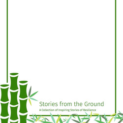 CDP Case Stories_edited