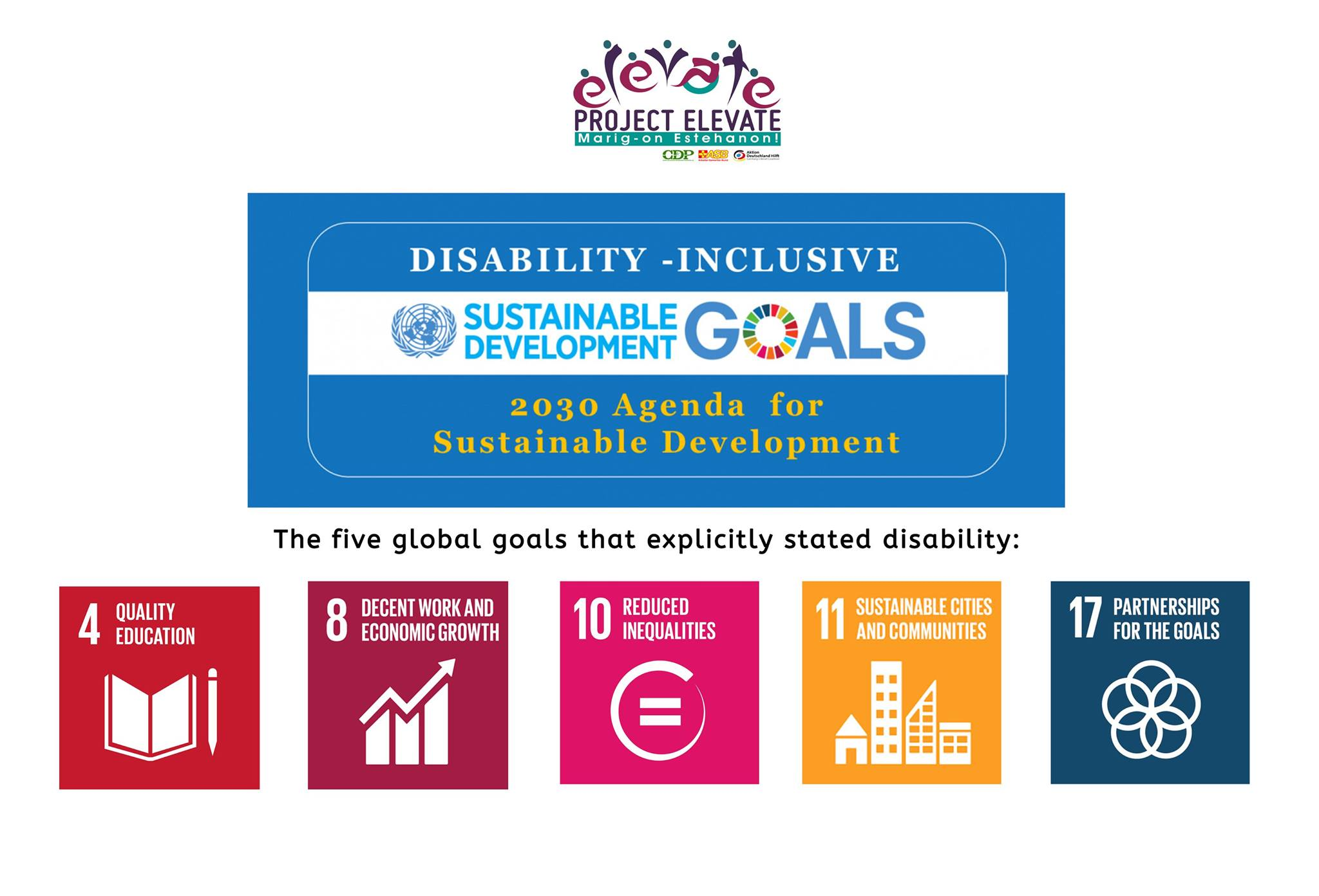 Disability-Inclusive SDG