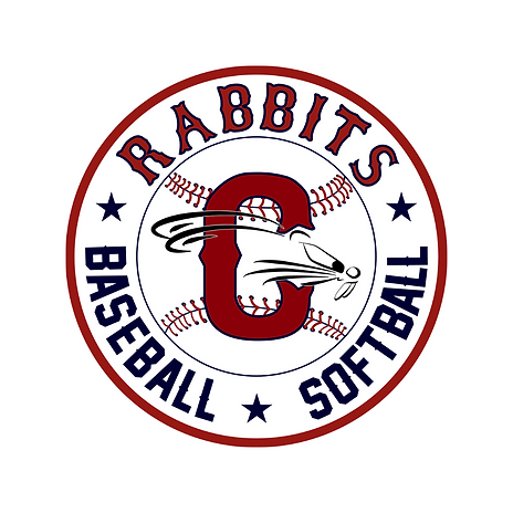 team logo (48).png