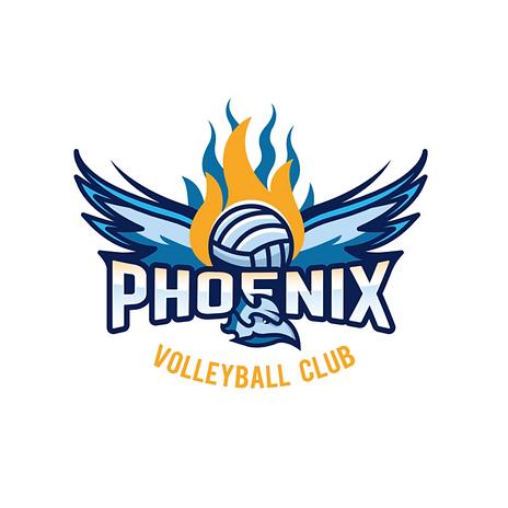 team logo (74).png