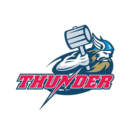 team logo (59).png